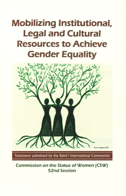 Mobilizing Institutional Legal and Cultural Resources to Achieve Gender Equality cover